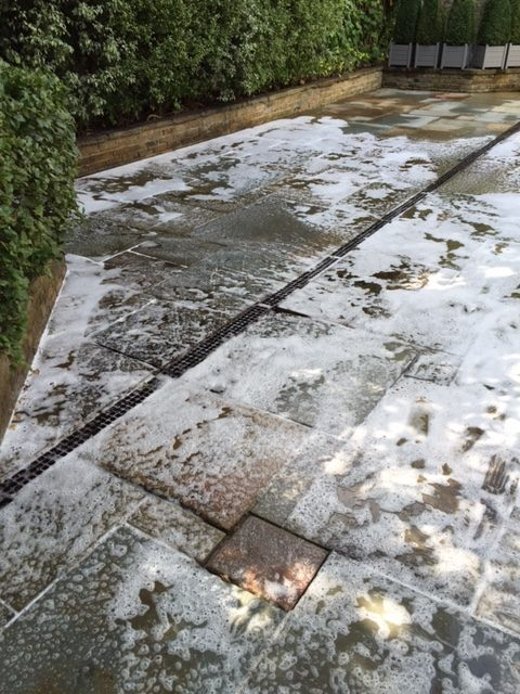 Black spot removal from patio
