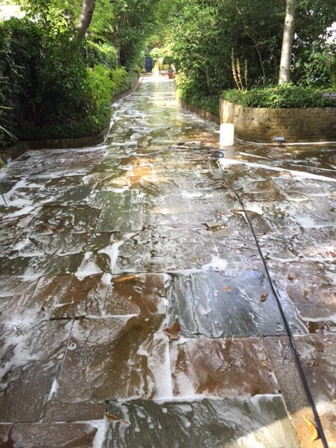 Soft washing and Patio Cleaning