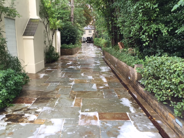 Patio Cleaning and softwashing London